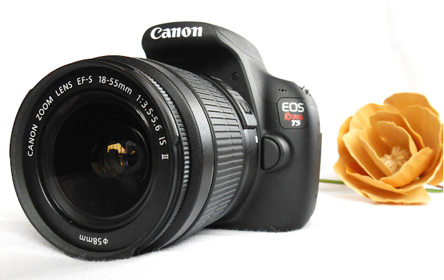 Introducing my…Canon Rebel T5